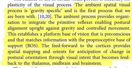 visuo spatial process